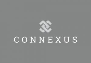 Connexus Consulting